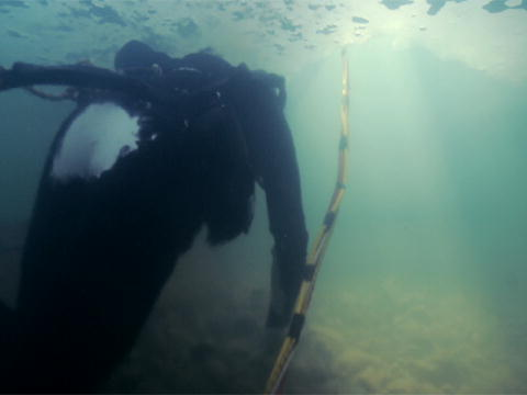 Gold Divers - Under the Ice: Nedkøling