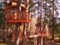 25 Feet Up | Treehouse Masters